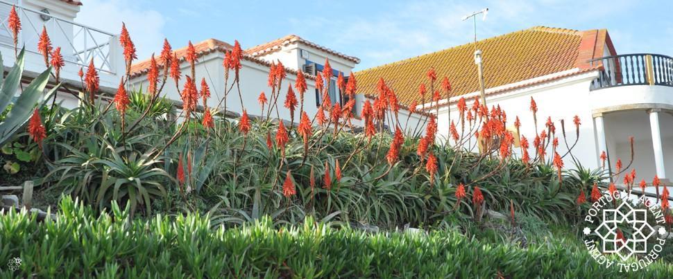 Bra-bostäder-Silverkusten-Portugal1