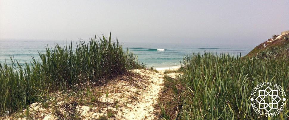 Vågor-stränder-och-surfing-Silverkusten-Portugal
